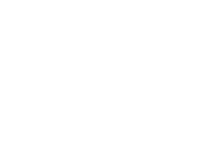 clientlogo-nad-light
